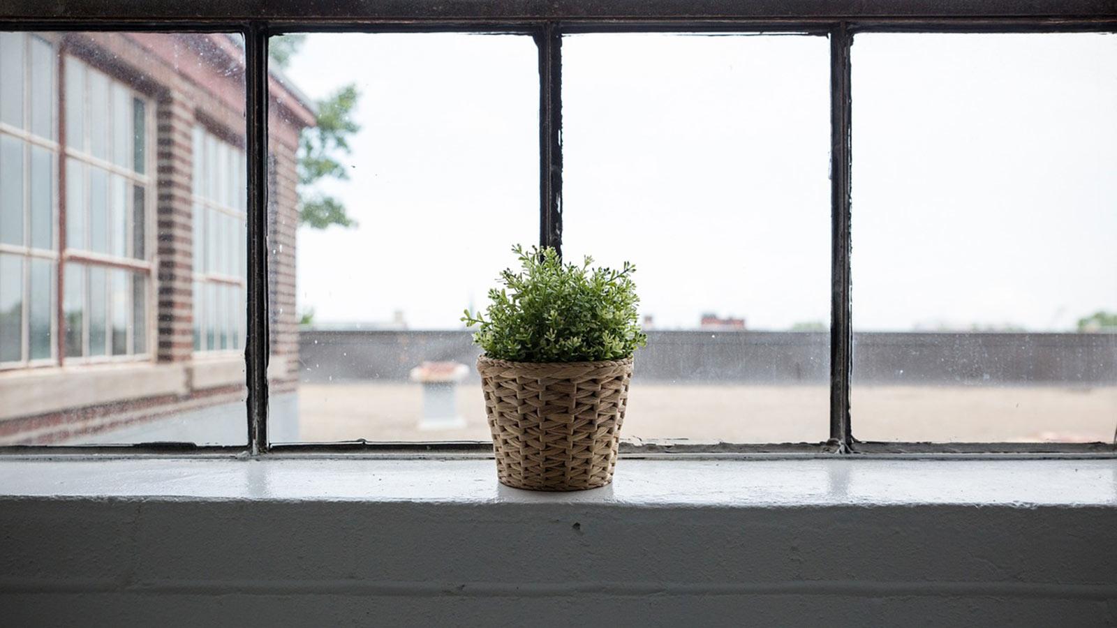 window-839824_1600x900